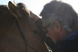 Horse Therapy Methods