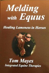 Melding with Equus