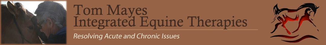 Tom Mayes Integrated Equine Therapies